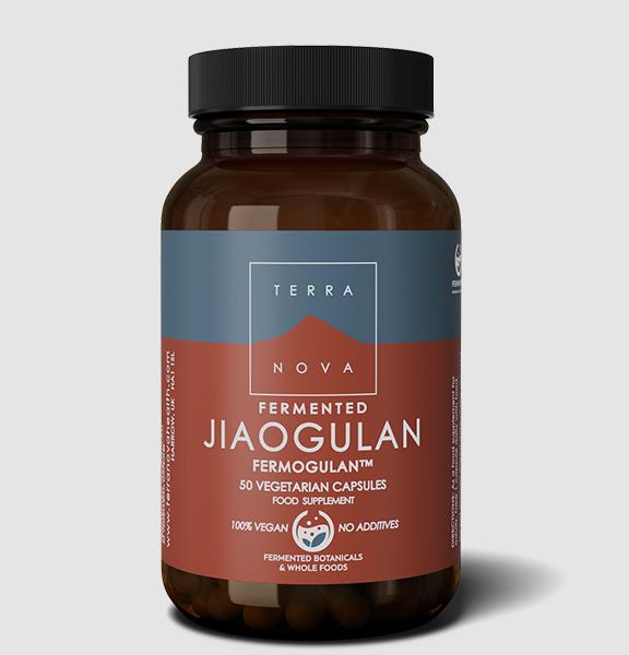 Terranova <br/> Fermented Jiaogulan FERMOGULAN™